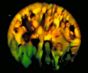A reflection of the fans as seen on the face of a bass drum for the percussionist just prior to the start of the Page and Plant show at Shoreline Amphitheater in Mountain View, Calif., September 12, 1998.